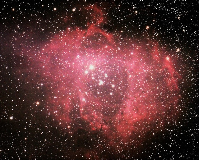 バラ星雲.jpg
