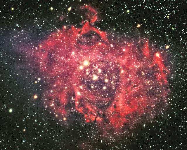 バラ星雲2.jpg