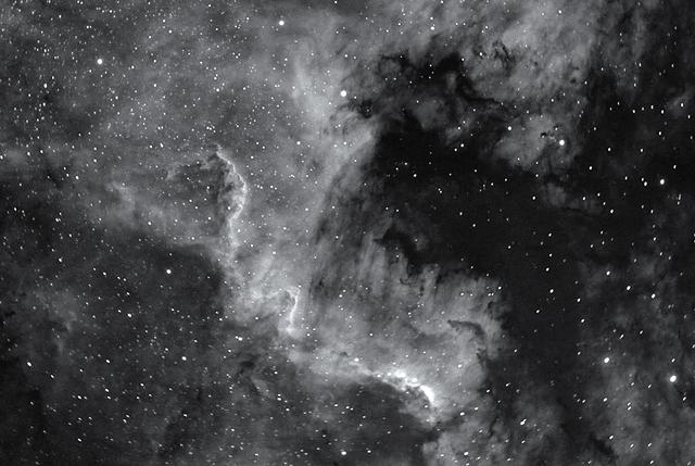 cygnus wall 2.jpg